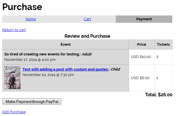 Example of Payment Form